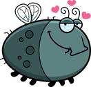 Cartoon fly in love Stock Illustration
