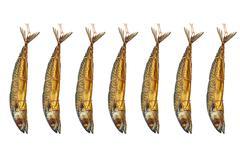 set of smoked atlantic mackerel.isolated. - stock photo
