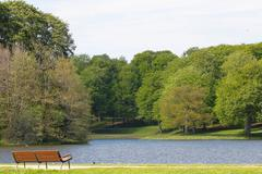 bench, lake and tress - stock photo
