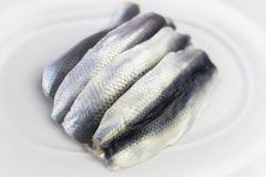 plate with four raw herrings - stock photo