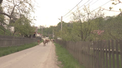 ULTRA HD 4K Group cow herd walk home mountain rural village house rustic road  Stock Footage