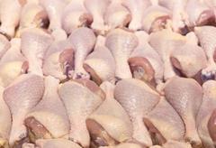 Fresh chicken leg Stock Photos