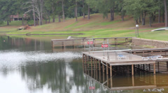 Dolly Shot of a Private Swimming Dock on a Serene Lake Setting Stock Footage