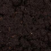 Garden beds of fertile soil close-up Stock Photos
