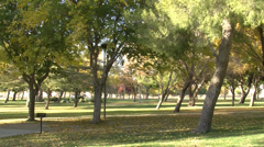 BEAUTIFUL PARK WIDE SHOT Stock Footage