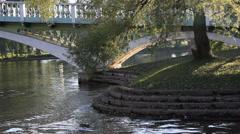 Toronto Centre Island with ducks Stock Footage
