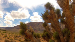 Joshua Tree Red Rock Canyon Clouds Time Lapse 15sec Stock Footage