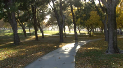 SIDEWALK AND TREES IN PARK Stock Footage