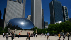 The Bean - stock footage
