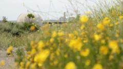 Nuclear powerplant rack focus flowers 2 Stock Footage