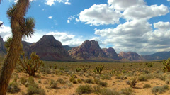 Spring Mountain Ranch State Park Ultra Wide Shot- Nevada Stock Footage