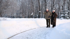 Walking elderly husband and wife talk in park at winter day - stock footage