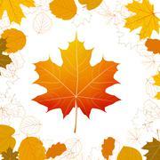 Autumn leaves design elements. plus EPS10 Stock Illustration