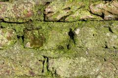 Detail of an old monumental wall. - stock photo