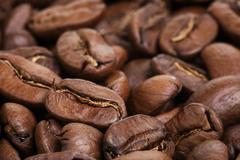 big arabica coffee beans background - stock photo