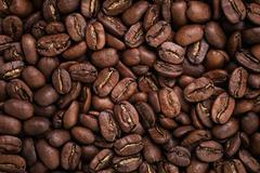 Big arabica coffee beans background Stock Photos