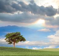Image of nice landscape - stock illustration