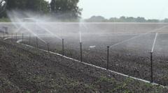 Wide Shot of a Sprinkler Irrigation System at 240 fps Stock Footage