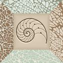 Stock Illustration of Nautilus shell background.