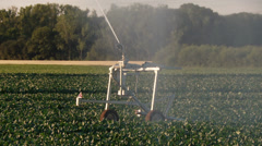 Industrial agriculture - sprinkler system - stock footage