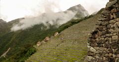 Machu Picchu Terraces -  Time lapse (PERU) Stock Footage