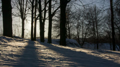 Sun, snow, cold wind glide camera move Stock Footage