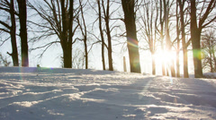 Sun, snow, cold wind glide camera move - stock footage