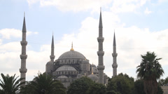 Wide shot of the Blue Mosque & Palm trees in Istanbul Stock Footage