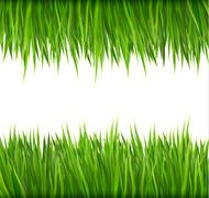 Nature background with green grass. vector. Stock Illustration