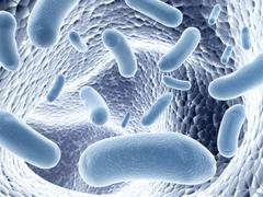 Colony of bacteria Stock Illustration