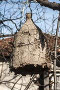 Old beehive for wild bees Stock Photos