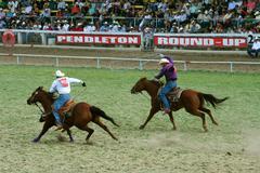 Two Cowboys Roping at Rodeo - stock photo