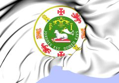 commonwealth of puerto rico seal - stock illustration