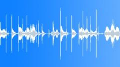 Wah Slap Bass Loop With Harmonics Stock Music