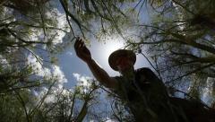 Herbalist picks yellow fennel flowers MRL Stock Footage
