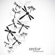 Dragonfly design on white background Stock Illustration