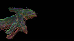 Colored threads, the oscillation of thin strips Stock Footage