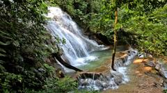 Cascada de Palenque - stock footage