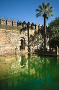 Alcazar pond - stock photo
