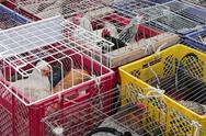 Stock Photo of poultry market