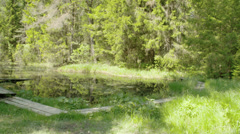 Landscape view of the spring water Stock Footage