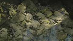 White stones underneath the water Stock Footage