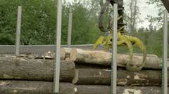 A large crane transferring logs Stock Footage