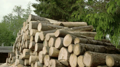 Heap of piled logs Stock Footage