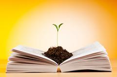 Stock Photo of Knowledge concept with books and seedlings