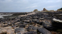 Rocky Beach At Low Tide Stock Footage