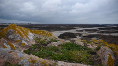 Jersey St Helier Bay At Low Tide - stock footage