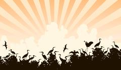 Bird colony Stock Illustration