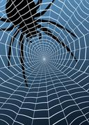 Spider and web Stock Illustration