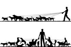 dog walker - stock illustration